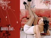 Amanda Lamb : Sexy Wallpapers x 4